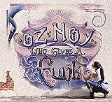 Songtexte von Oz Noy - Who Gives a Funk