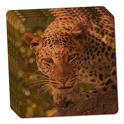 Leopard Print African Safari Thin Cork Coaster Set of 4 by Made on Terra -