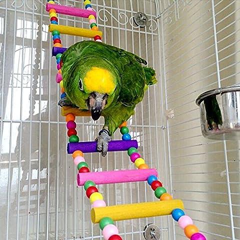 Dairyshop Pet Bird Swing pont en bois Échelle Climb calopsitte élégante perruche Budgie Parrot NEUF