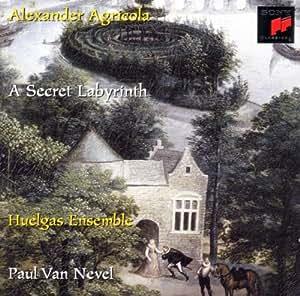 A Secret Labyrinth [Import anglais]