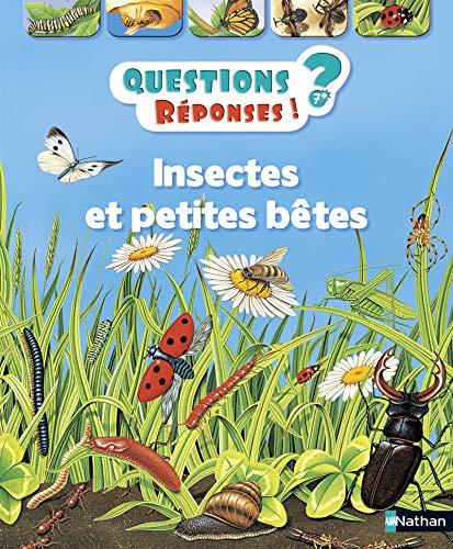 Insectes et petites betes - vol11 (Questions-réponses) por Amanda O'Neill