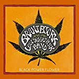 Black Power Flower (Limited Black Vinyl) [Vinyl LP]
