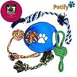 Petify Set 6 Teile Dog Toy Hundespielzeug Kauspielzeug Interaktives Spielzeug Baumwollseil Baumwollspielzeug Baumwollknoten Spielzeug Für Hunde Und Welpen Robust | Inclusive Ratgeber