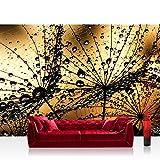 Vlies Fototapete 416x254cm PREMIUM PLUS Wand Foto Tapete Wand Bild Vliestapete - Blumen Tapete Pusteblume Löwenzahn Natur Blume braun - no. 1316