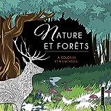 Nature et forêts - A colorier et à encadrer !