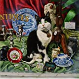 Jess, the Black & White Cat in the Antique Shop, Greeting Card by Geoff Tristram, Greetings Card Size Approx. 140 x 140mm
