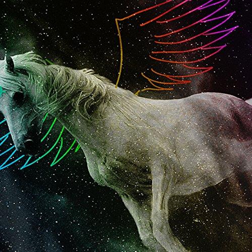 Pegasus Pferd Fantasie Magie Mythos Damen Schwarz S-2XL Muskelshirt   Wellcoda Schwarz