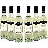 Sant'Orsola Chardonnay Veneto I.G.T. - Vino Bianco - Pacco da 6 x 750 ml