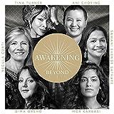 Awakening Beyond -