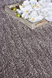 Hochflor Langflor Shaggy Barbara Becker Touch Taupe