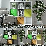Raumteiler Mexx Bücherregal Regal Weiss Schwarz Sonoma 16 Fächer 3 x 3, Farbe:weiß, Raumteiler:9 Fächer