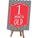 Alterego Baby Milestone Cards with Easel Stand - Multi Color (Pack of 26 Cards - 6*4 in and one Mini Easel Stand)