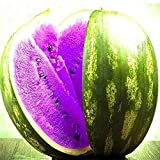 KINGDUO Egrow 50Pcs/Pack Wassermelone Samen Garten Colorful Essbare Grün Gelb Weißwasser Melone Samen-Lila