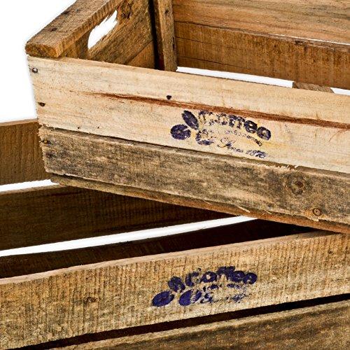 Eccezionale Casse in legno Set di 5, motivo: caffè, effetto vintage, casse di  VP66