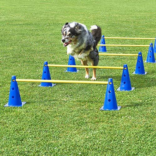 den 5er Set, blau/gelb, mit Tragetasche, für Agility - Hundetraining ()