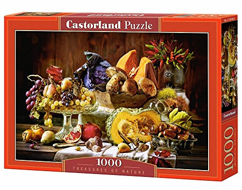 Castorland 1000 Teile