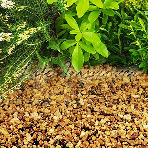 Gravier pour empêcher les mauvaises herbes de pousser, patio, allées, pare-terres de plantes 20KG Autumn Gold Chippings