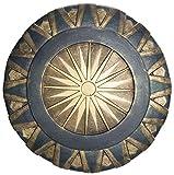Wonder Woman DC Comics 23' Shield Costume Accessory