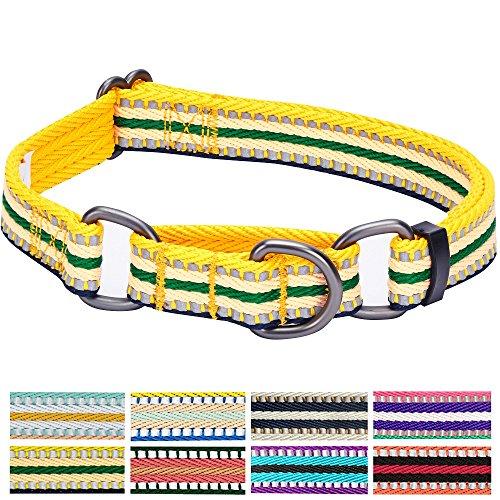 Blueberry Pet 2,5cm L 3M Reflektierendes Bunt Gestreiftes Gelb und Grün Sicherheitstraining Martingale Hundehalsband für Große Hunde -