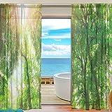 Sheer Voile Fenster Vorhang Tropical Wald Bäume Landschaft Sonnenlicht Muster Print Polyester Material Stoff für Schlafzimmer Decor Home Tür Deko Küche Wohnzimmer 2Felder 198,1x 139,7cm
