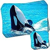 Orche/Orcas spada Wale Set di 4Tovagliette e Sottobicchieri Orca spielt in der Sommersonne im Wasser