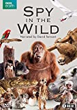 Spy in the Wild [DVD]