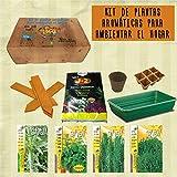 Kit de cultivo de plantas aromáticas para ambientar el hogar