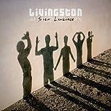 Songtexte von Livingston - Sign Language
