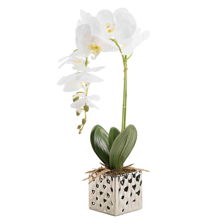 CLOCOLOR Flores artificiales de orquídeas Bonsái de Phalaenopsis con maceta de alta calidad para decoración hogar de fiestas (Blanco)