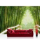Vlies Fototapete 400x280 cm PREMIUM PLUS Wand Foto Tapete Wand Bild Vliestapete - BAMBOO WALK - Bambusweg Bambuswald Dschungel Asia Asien Bamboo Way Wald - no. 002