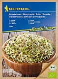 Keimsprossen Bio Alfalfa