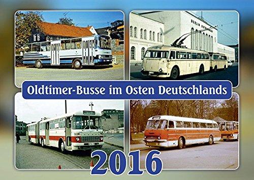 Preisvergleich Produktbild Oldtimer-Busse 2016: Oldtimer-Busse im Osten Deutschlands