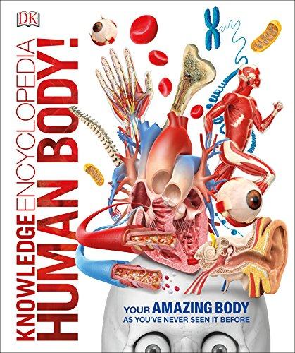 Human body!.