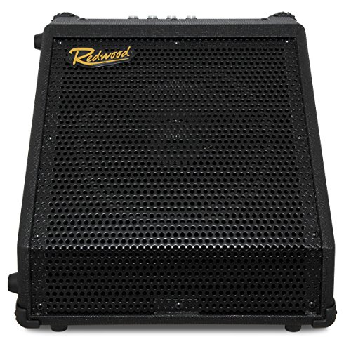 Redwood DR-30 30W Combo Amplifier for Electronic Drums