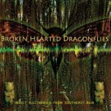 Brokenhearted Dragonflies - Insect Electronica [Vinilo]