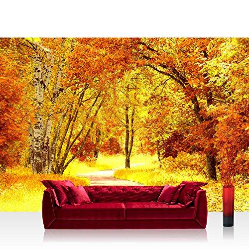 Carta da parati in tessuto non tessuto Premium Plus parete Foto Carta da Parete in (Autumn Leaves Tessuto)