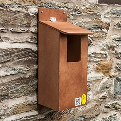 Little Owl or Large Bird Nest Box by Nestbox Co.