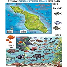 Santa Catalina Island Fish ID for Scuba Divers and Snorkelers