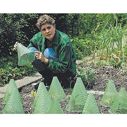 Preisvergleich Produktbild Gardissimo Pflanzenhut Sunnyboy (Stz. 10 Stk) - 534405