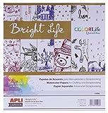 B.Papel Scrap Brigh Life 30,5x30,5 6h