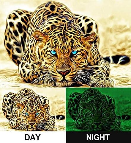 Images sur Toile Motif Leopard fantastique Startonight Nature, 80 cm x 80 cm Tableaux pour la mur, encadres, prets a poser, tout les images sur chassis, bois veritable.