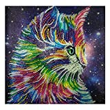 11.8 x 11.8 in speciale forma DIY 5D pittura diamante kit punto croce gatto parziale drill ricamo Arts Craft Mosaic for home Wall Decoration by Aobuang