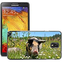 Just Phone Cover Etui Housse Coque de Protection Cover Rigide pour // M00139302 Cerdo Cerdos Linder Piglet // Samsung Galaxy Note 3 III N9000 N9002 N9005