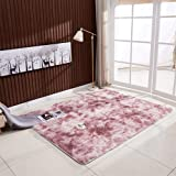 Mainstayae Ultra Soft Tie-Dye Style Gradient Color Carpet Floor Bedroom Mat Rectangle Shape Fluffy Rug for Living Room Bedroo