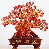 CrazySell Geld-Baum, 24,1cm groß, Karneol, grüner Kristall, Feng Shui, Glücksbringer Orange (Carnelian)