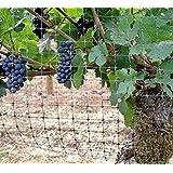 MTL pájaros, planta protección barrera de pájaro de malla, malla de jardín, pájaros para jardines y ligera aplicaciones 7x 20pies