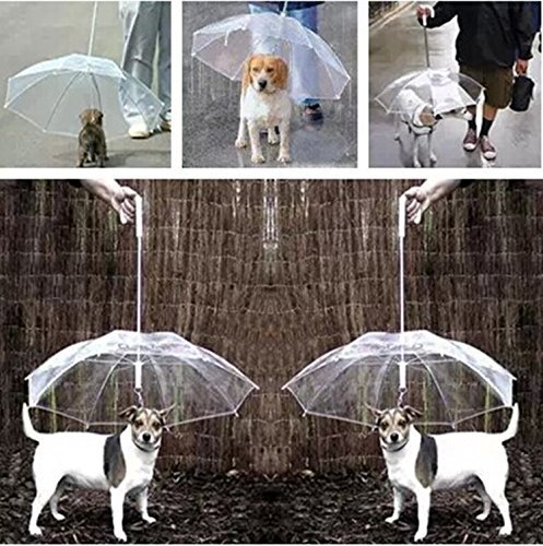 ombrello-per-animali-domestici-mantiene-il-vostro-animale-domestico-asciutto-e-comodo-in-caso-di-pio