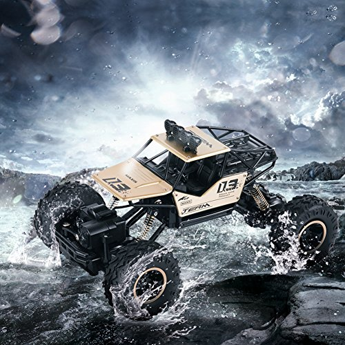 GEEDIAR RC Auto 1/16 Ferngesteuerte 4WD Monster Truck/Off Road Fahrzeug RC Rock Crawler Monster Remote Control Vehicle (Gold)