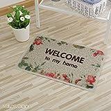 MKSFY Rutschfeste Absorbierende Bodenmatte Tür Matte PVC-Draht Ring Teppich Matte für Badezimmer Küche Studie Schlafzimmer Korridor Eingangstür Wohnzimmer, 45 cm * 75 cm