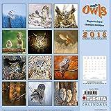 Magic Owls 2018: Kalender 2018 (Wonderful World)